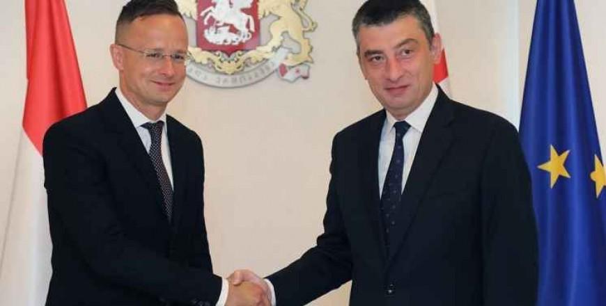 Hungarian FM Péter Szijjártó Visits Tbilisi