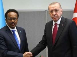 Turcia devine interesată de Cornul Africii