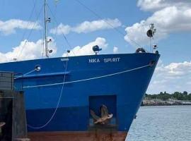 Ukraine captures Russian tanker involved in Kerch Strait confrontation